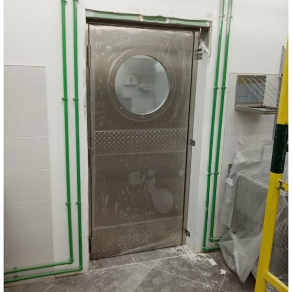Маятниковая однопольная дверь